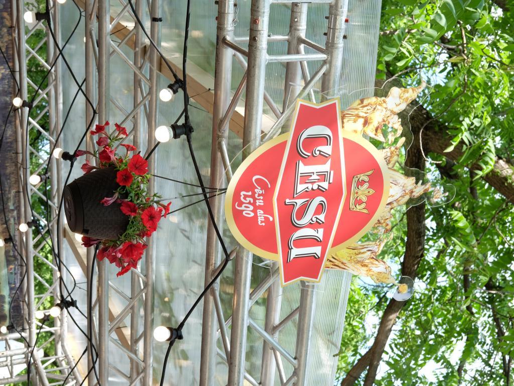 Alus festivāla bāra iekārtojums un ražošana